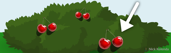 Red berries on a green bush